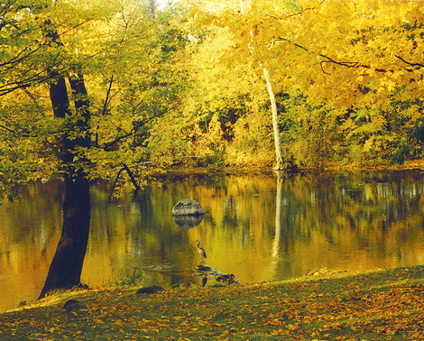 River_in_fall